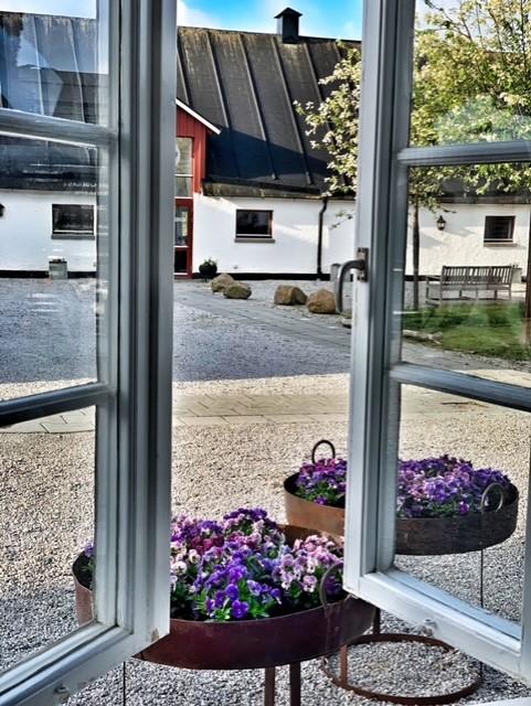 Öppet fönster ut mot gården
